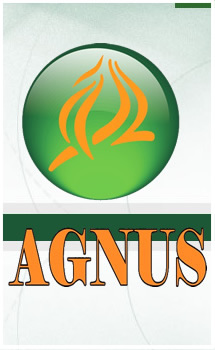 Igreja Agnus