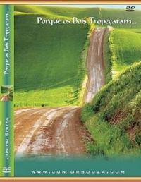 Porque os Bois Tropeçaram - Pastor Junior Souza